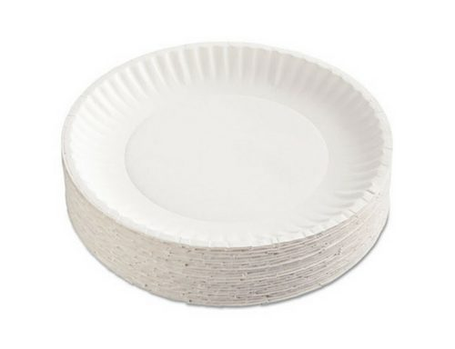 Large Paper Plate